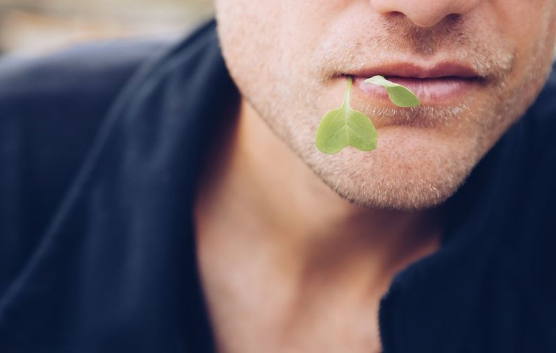 Midsection Of Man Carrying Herb In Mouth