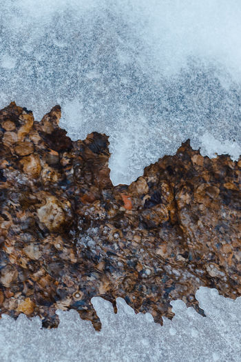 Close-up of snow on rock during winter