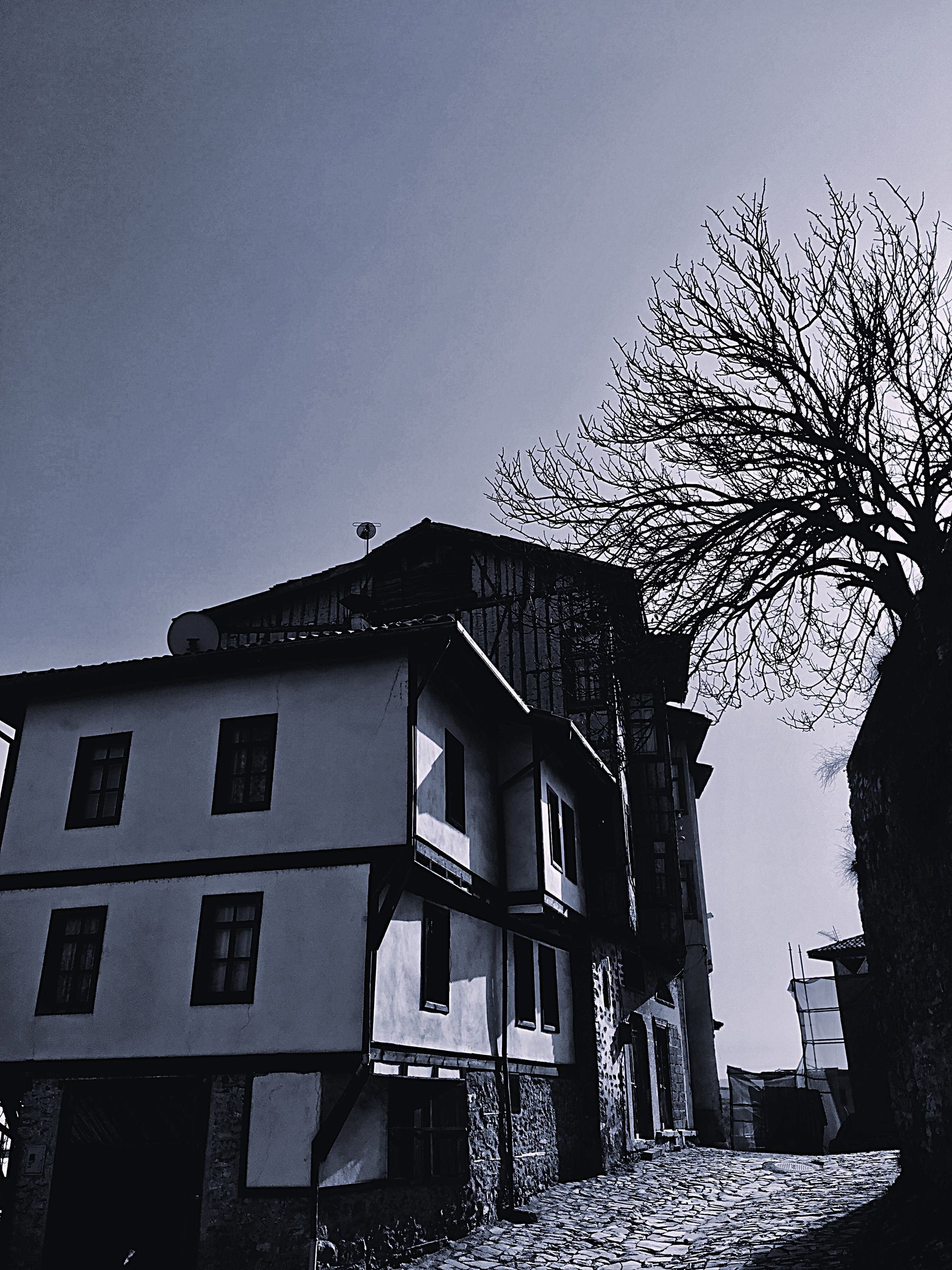 building exterior, architecture, built structure, sky, building, tree, nature, clear sky, low angle view, residential district, no people, window, plant, day, house, outdoors, city, bare tree, copy space, old