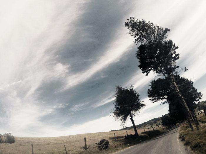Bikeride On The Road Roadtrip Roadscenes