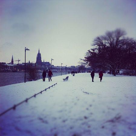 Winter am Main