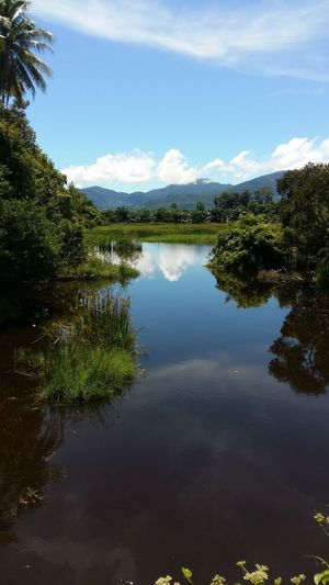 green nature Thailand Khanom Relaxing Nature Lake View Sky And Clouds Blue Sky Mirror Reflection Reflection Cloud - Sky Mountain Standing Water Reflection Lake Water Plant