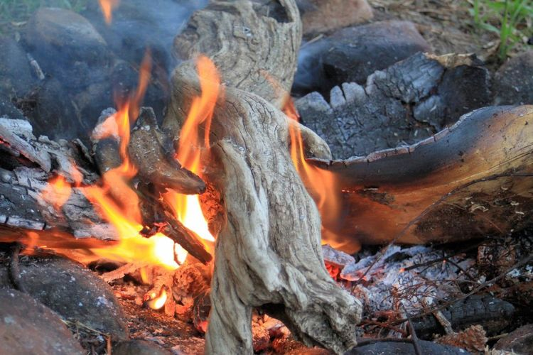 The campfire is prepared for grilling Fire Wood Flames Flames & Fire Campfire Burning Outdoors Power In Nature