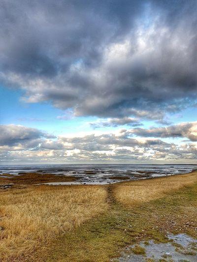 Dorum-Neufeld Nature Sky Coastline Deich  No Water First Eyeem Photo