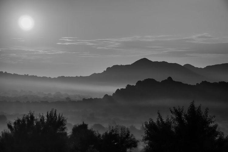 Silhouette misty landscape against sky