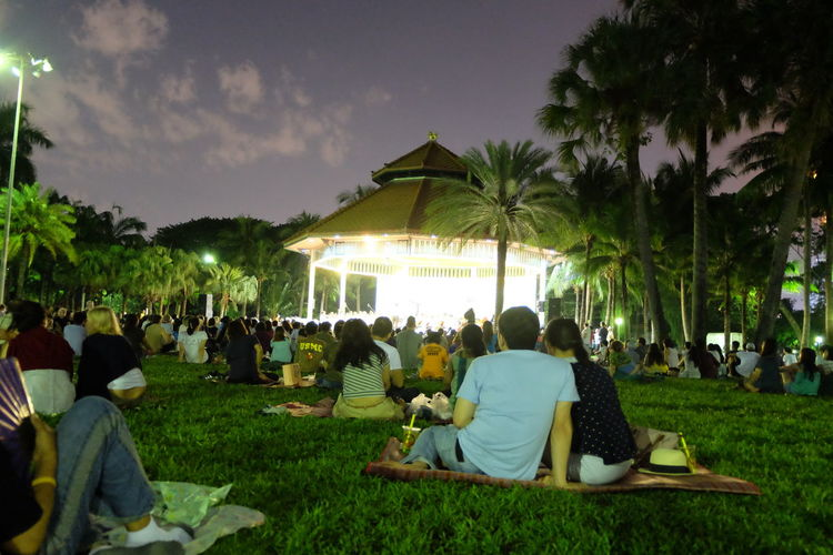 Music in the park event in the evening. At The Park Enjoyment Events Friendship Fun Green Color In The Park Music In The Park Night Photography Outdoors Park Togetherness Tree