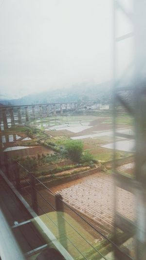 列车-雨景 City Cityscape Water Fog Urban Skyline Skyscraper Sky Architecture Building Exterior Built Structure