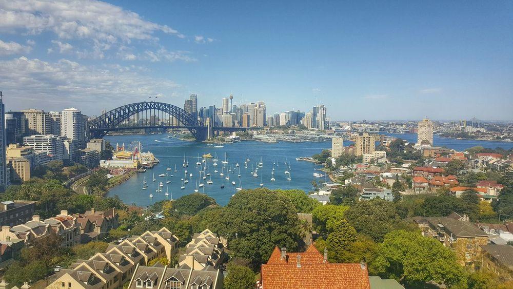 Sydneyharbour Harborbridge Landscape Galaxys6