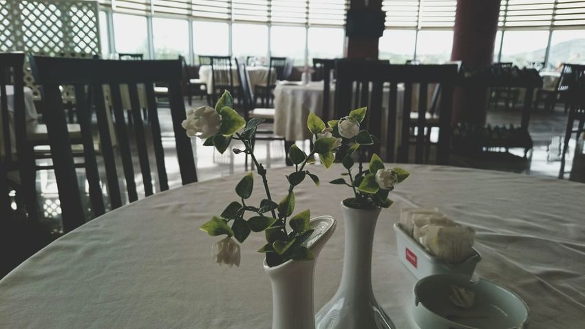 Light And Shadow Open Edits Restaurant Empty Restaurant Tables EyeEm Best Shots Artificial Flowers Taking Photos Feeling Creative