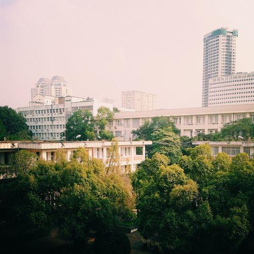Autumn Colors Landscape University Campus Building