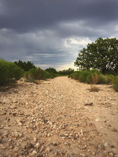 """""""The Wash"""" An example of one of the infamous flash flood arroyo's of New Mexico, USA. Cloud - Sky Storm Cloud Wash Arroyo GULLY Newmexicophotography Newmexico Newmexicoskies Nature"""