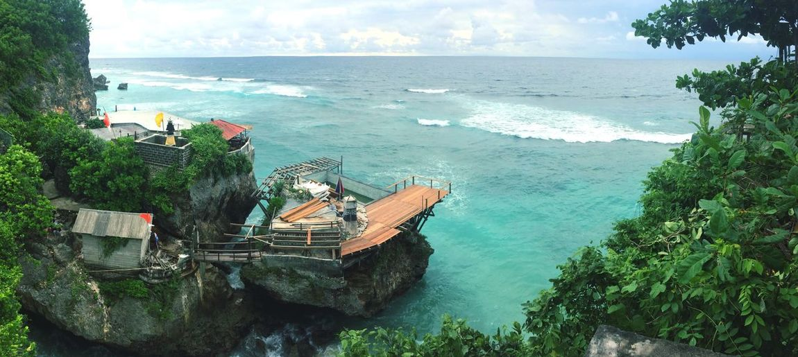 Water Sea Plant