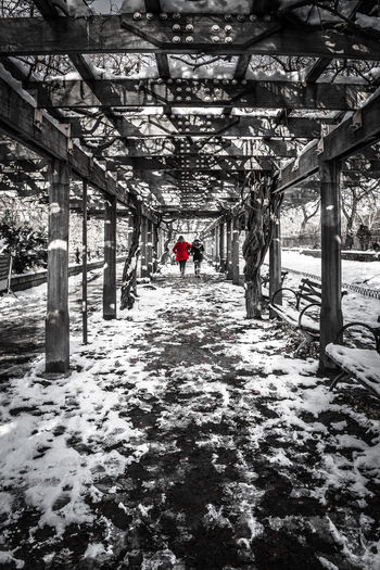 Two people walking on the snow in Central Park. Architecture Beauty In Nature Black And White Built Structure Outdoors Real People Rear View Snow The Way Forward Walking Winter