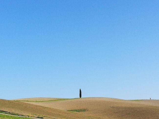 un albero e un uomo Trees And Nature Toscana, Val D'Orcia, The Earth 💚 Day Contemplazione Solitudini Clear Sky Blue Standing Men