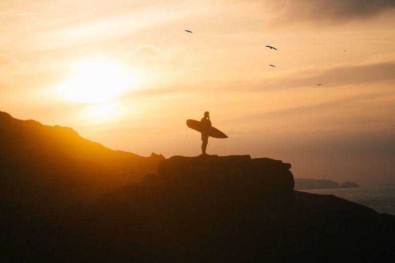 Silhouette Of Bird Flying Against Sky During Sunset