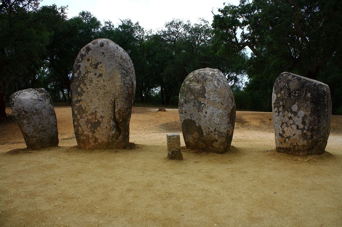 Almendres Cromlech in Guadalupe - Municipality of Évora Alentejo Ancient Ancient Civilization ANCIENT WISDOM Astronomical Observatory Astronomy Circular Pattern Dolmen EyeEm Gallery Eyeemportugal Forest History Megalithicsite Monuments Neolithic No People Outdoors Portugal Portugaldenorteasul Religion Standing Stones Stone Stonecircle UNESCO World Heritage Site Évora
