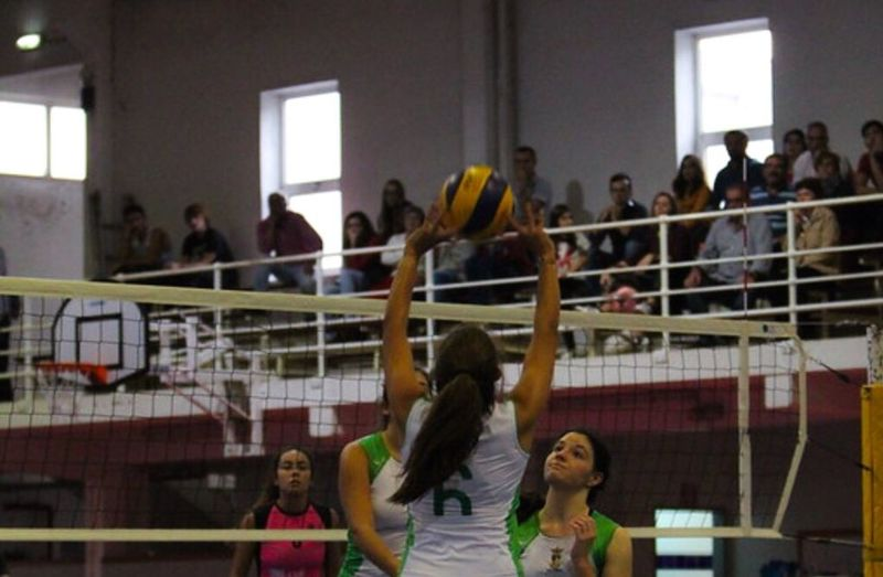 Large Group Of People Full Length Playing Indoors  People Sport Adult Adults Only Day Volleyball