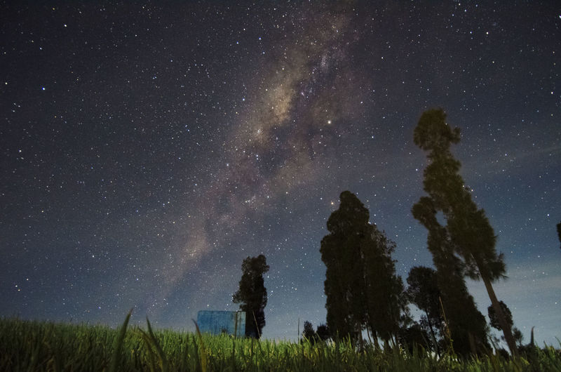 Milkyway Star -