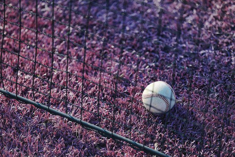 High angle view of baseball on field