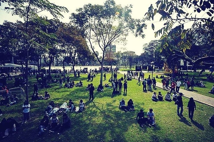 Lima-Perú Parque  Music Festival People
