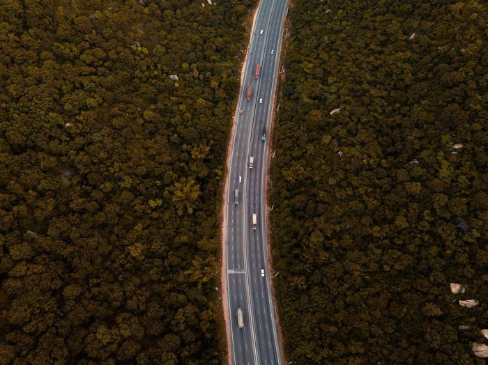 Aerial view of road amidst trees