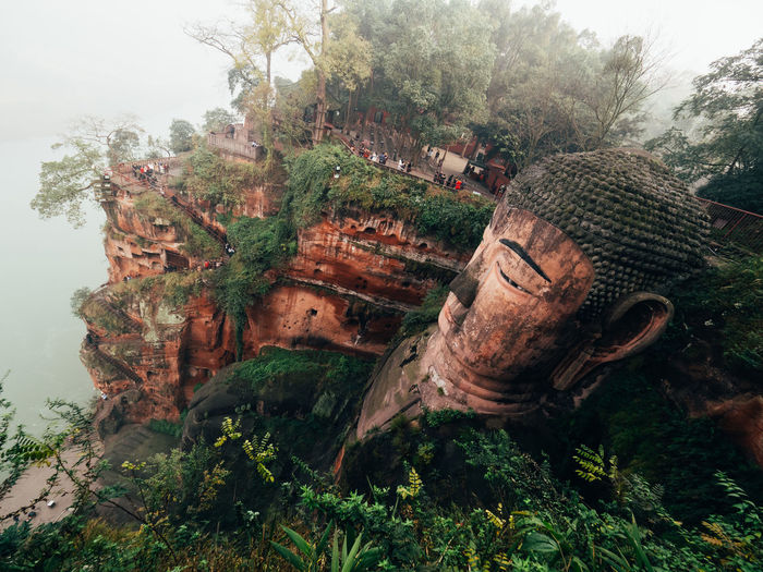 Abandoned Architecture Beauty In Nature Buddha Built Structure Damaged Day Epic Giant Growth Huge Leshan Mammoth Nature Outdoors Plant Sky Temple Tree