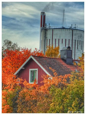Sweden The True Story Eskilstuna-streetphotography Autumn Tree House Sky Architecture Building Exterior Built Structure Cloud - Sky