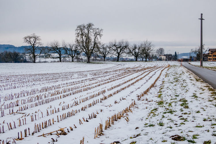 Scenic View Of Snow Covered Field Against Sky At Knutwil