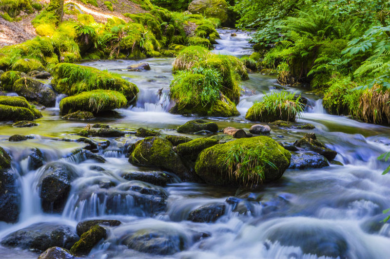 Flowing Water Freshness Nature Beauty In Nature Blurred Motion Day Forest Long Exposure No People Outdoors River Senic Water Water Motion Waterfall
