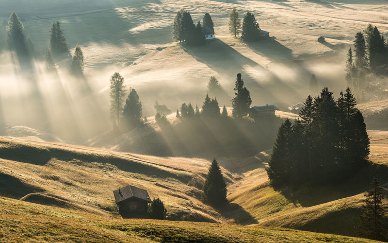 Alpe di Siusi Landscape Mist Misty Morning Outdoor Beauty In Nature Tranquil Scene Tranquility Nature Environment Idyllic Sunlight Sunbeam Fog Tree My Best Photo