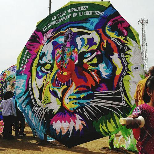 Tiger. Identity Guatemala Art Sumpango