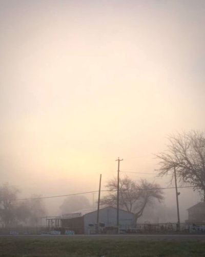 Tree Sunset Built Structure Sky Outdoors Fog No People Nature Architecture Electricity Pylon Day Fortworthtx