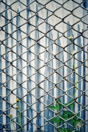 Full frame of wall against chain link fence