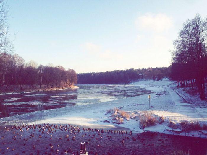 Litwa Krajobraz First Eyeem Photo