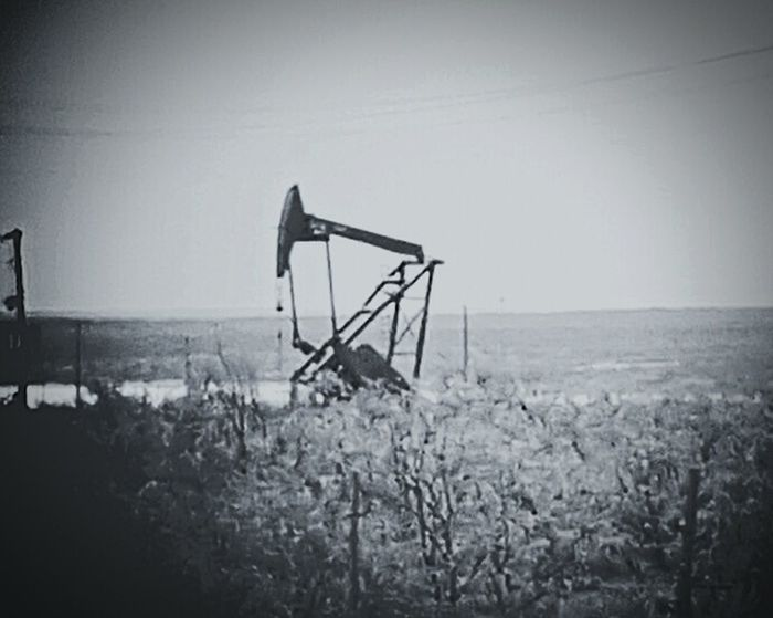 Black and white of a Pump Jack photo I shot today! Texas Made Crude Oil Texas Landscape Light And Shadow Black And White Photography Black And White Pumpjack Oil Field Production Makingmoney The Architect - 2017 EyeEm Awards The Photojournalist - 2017 EyeEm Awards The Portraitist - 2017 EyeEm Awards BYOPaper! The Still Life Photographer - 2018 EyeEm Awards The Portraitist - 2018 EyeEm Awards The Traveler - 2018 EyeEm Awards The Creative - 2018 EyeEm Awards