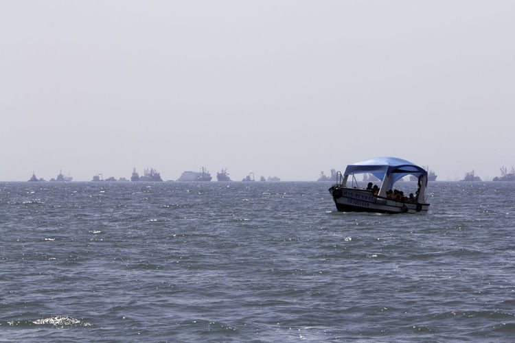 Bird Boats Boats And Water Callao Day Outdoors Pacific Ocean Pellican Peru Port Port Of Callao Sea Sea And Sky Sea Bird Seagull Seaside