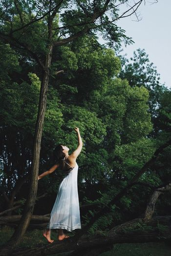 EyeEmNewHere Tree Real People Plant One Person The Week on EyeEm Growth Lifestyles Green Color Women Nature Human Arm Standing Dress Day Forest Fashion Young Adult Beauty In Nature Young Women Hairstyle People Photography People Of EyeEm Girl Sexygirl