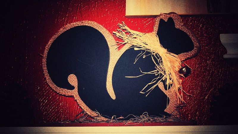 Taking Photos Squirrel Unique Myview Mywall ColorRed Red Art And Craft Things I Like #red