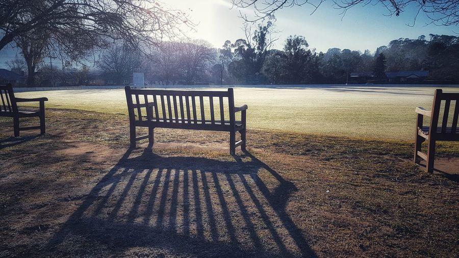 Long Shadow -