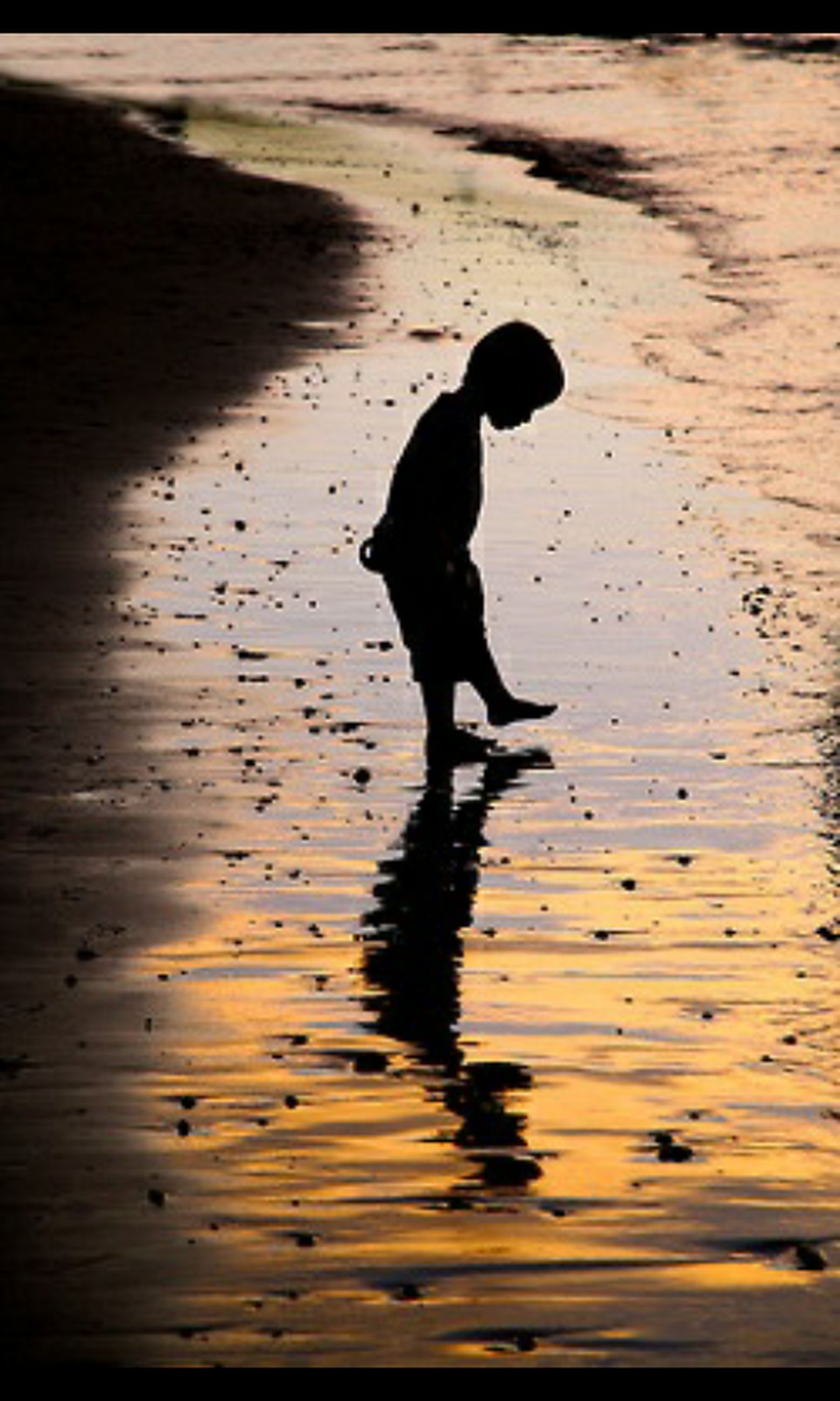 water, silhouette, walking, full length, reflection, shadow, one person, one animal, sunlight, beach, outdoors, sea, bird, wet, high angle view, sunset, shore, nature, standing, animal themes
