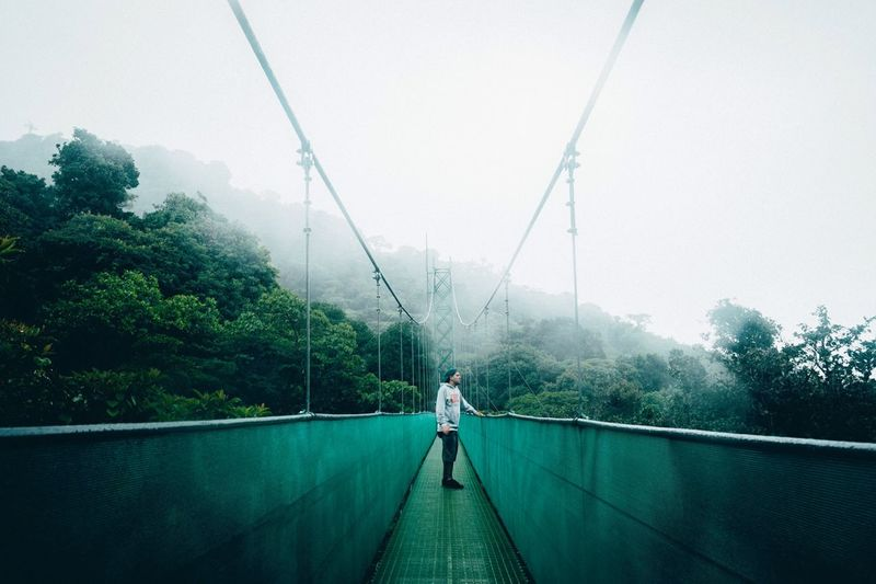Nature EyeEm Best Shots EyeEm Nature Lover Landscape Portrait Costa Rica Bridge Trees