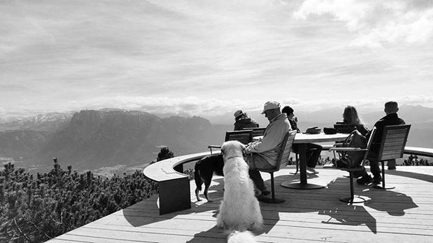 Dreaming a new way to live.... Runder Tisch by Franz Messner Rundertisch Cornodelrenon Dolomiti Spettacolodellanatura Ilovemountains Panorama Landscape