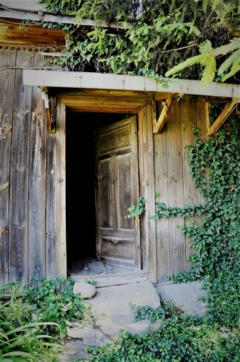 Old House Door Built Structure Wood - Material Architecture Outdoors No People House Day Building Exterior Plant Tree