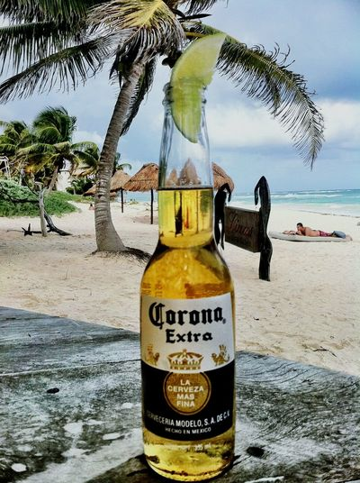 Well at the beach in Mexico Liquidlunch Liquid Lunch Eye4photography  EyeEm Best Shots Summer ☀ Pictures By Me Beach Sand Beer Mexico Carribean Palm Trees Paradise Fantastic Photography Is My Escape From Reality! The Tourist Liquid Lunch
