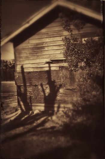 Photography Sepia January 2016 Small Town Abandoned Places Old Carriage House Conrast unkept shrubs and lawn Backstreets & Alleyways Shadows