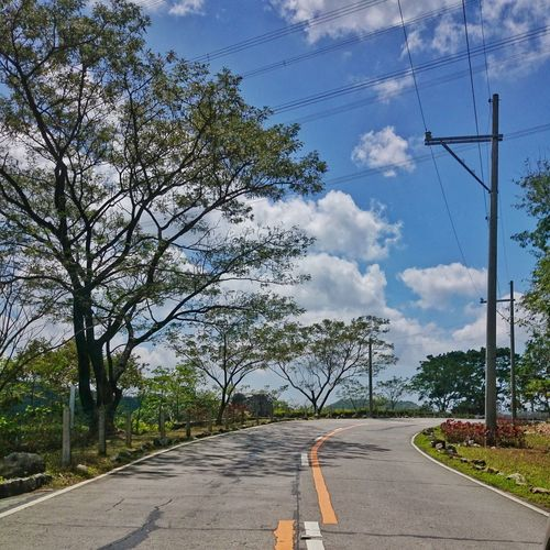 The curve... Road Curve Trees Road Trip Summer Showcase March Philippines Eyeem Philippines Here Belongs To Me