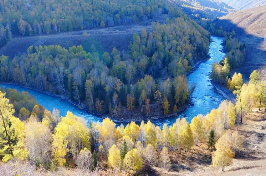 2015.9.27 -China xinjiang Nature Tree High Angle View Scenics Beauty In Nature Landscape Tranquility