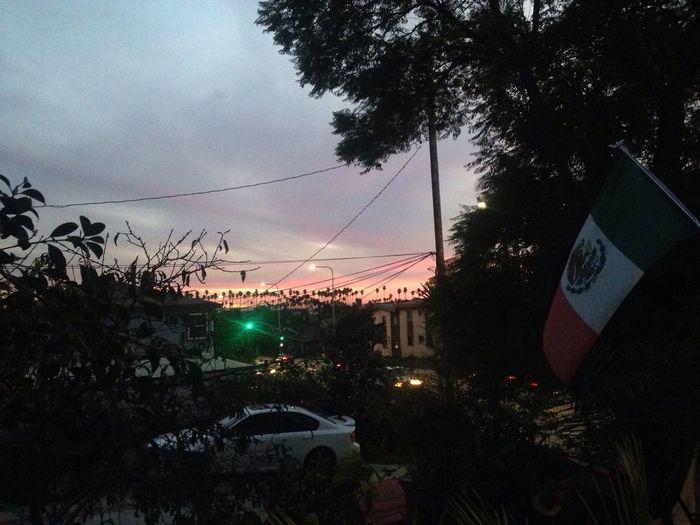 Los Angeles, California Sunset Nature