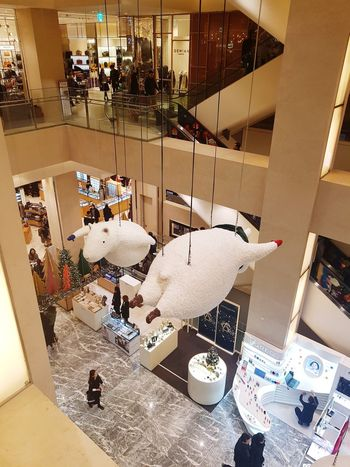flying lambs Lambs Flying High Shopping Mall Business Finance And Industry Industry Shop