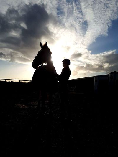 Horsemanship Horse Equine Riding Equestrian Sunset Silhouettes Clouds Blue Youngphotographers Creativelife Horses Girl Horseygirl Bighorse Walks Hacks Beaut WarHorse Cal Sun Bright Stables Saddle Fields Mud Puddles Stones Reigns Briddle Stirrups Boots Chaps Hooves Horseshoes Humanshoes Neigh Mane Tail Showhorse Midground Foreground Background Focus Poser Sundown Onewhitesock Swishswish Allnatural Natural Nature Path Special Bond Specialbond Bonding Date Friday Friyay NothingBetter Chill Whoneedsnetflix Ride Rider Silhouette Friendship Sky Cloud - Sky